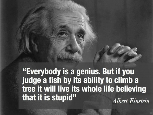 [Image] Everybody is a Genius…