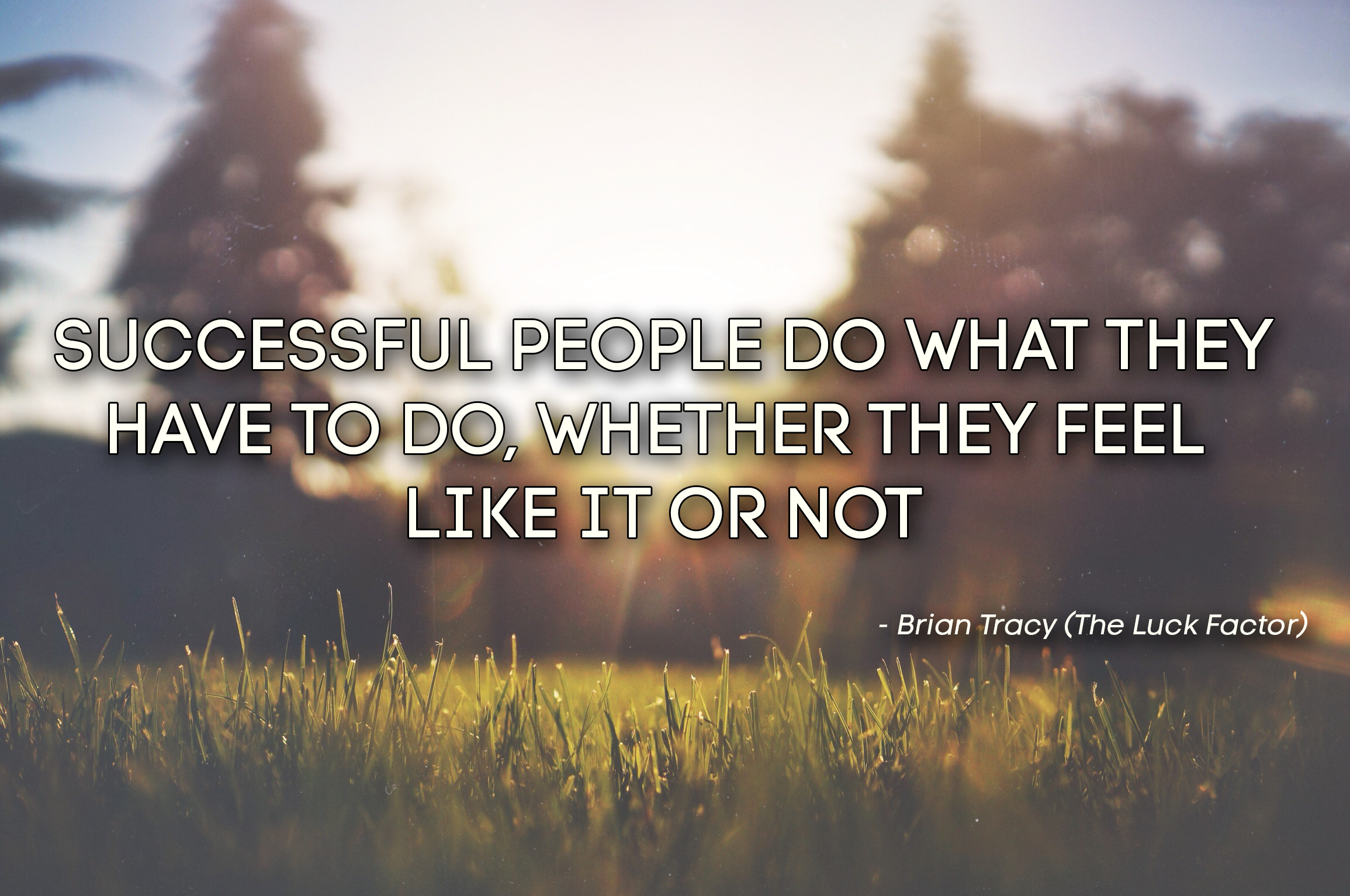 Successful people do what they have to do, whether they feel like it or not
