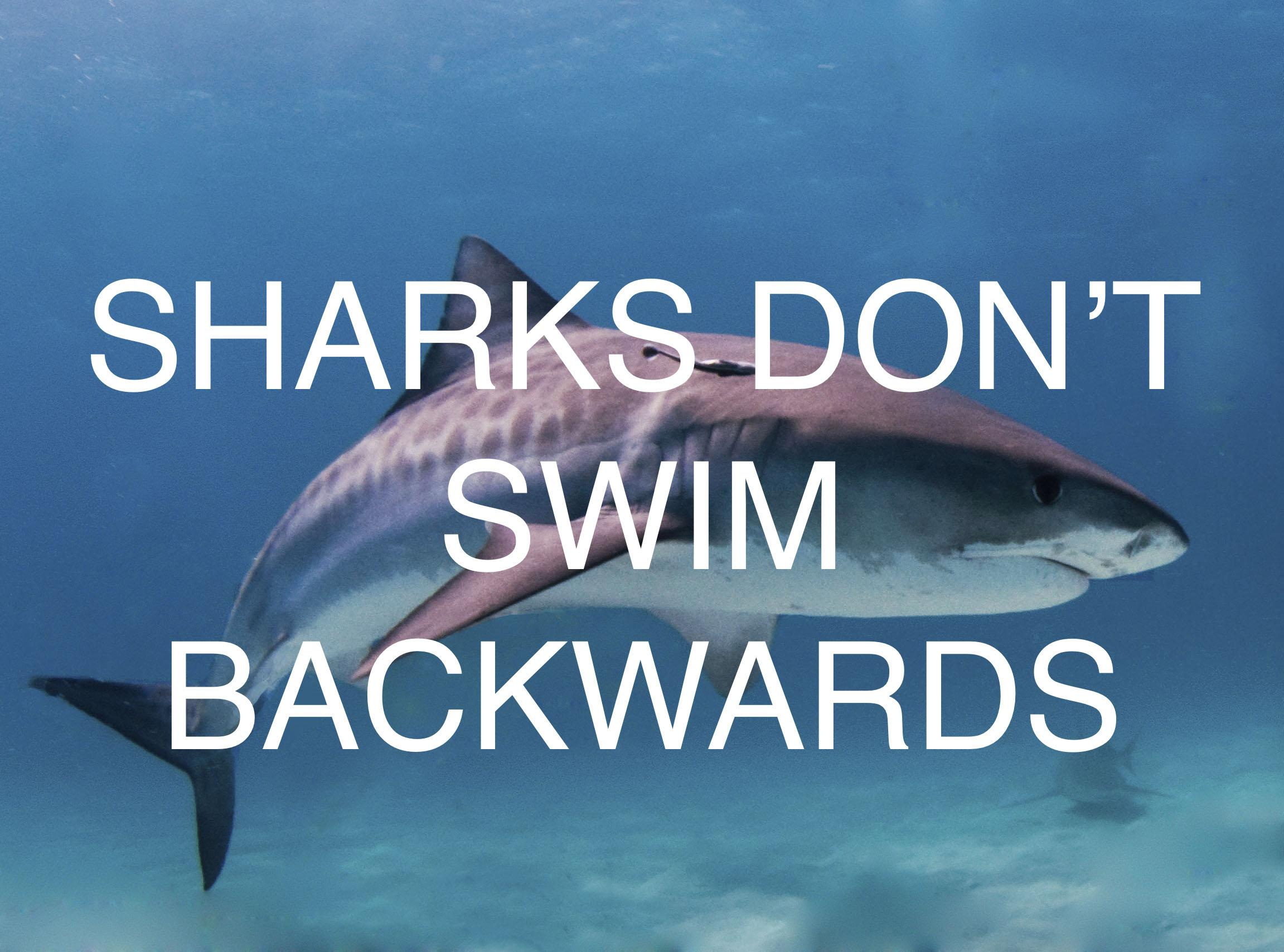Sharks don't swim backwards