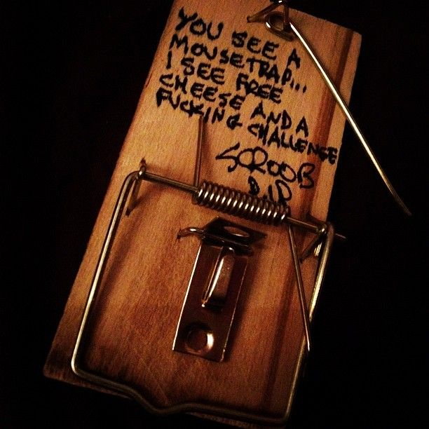 [Image] You See a Mouse Trap