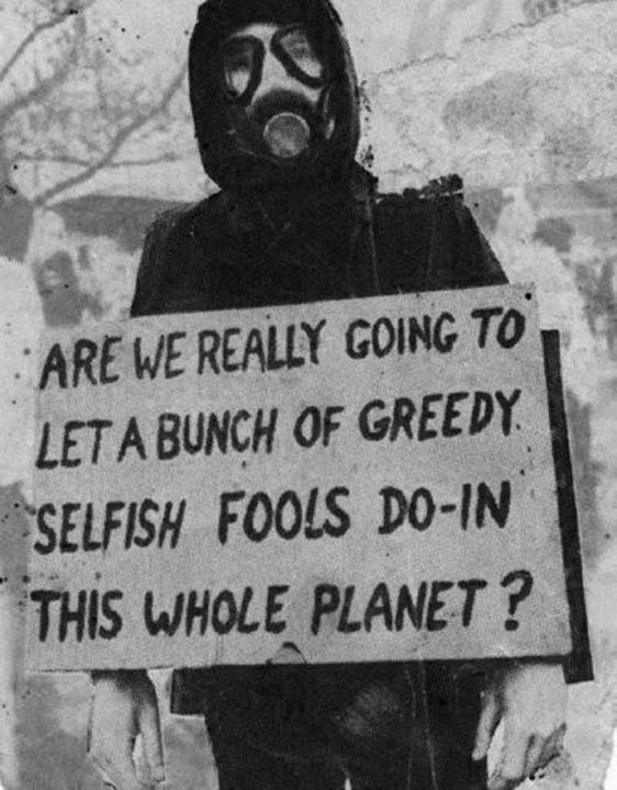 [Image] Greedy Selfish Fools