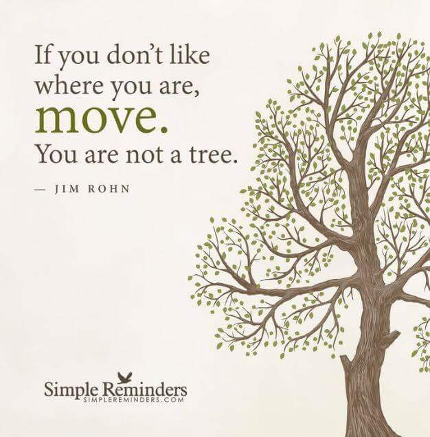 If you don't like where you are, move.  You are not a tree.  – Jim Rohn