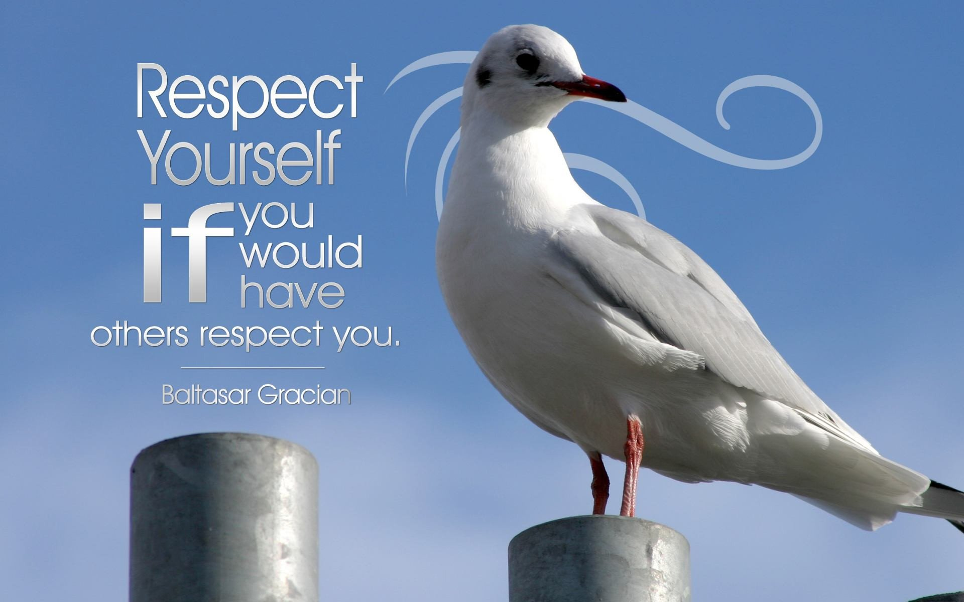 [Image] Respect Yourself