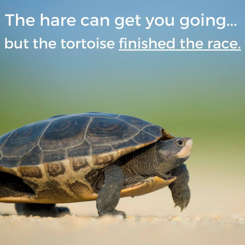 The hare can get you going but the tortoise finished the race