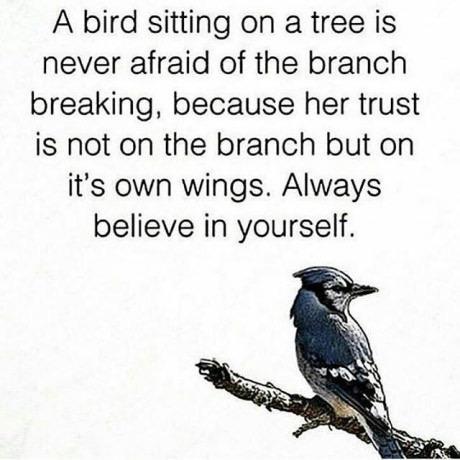 [Image] Always believe in yourself.
