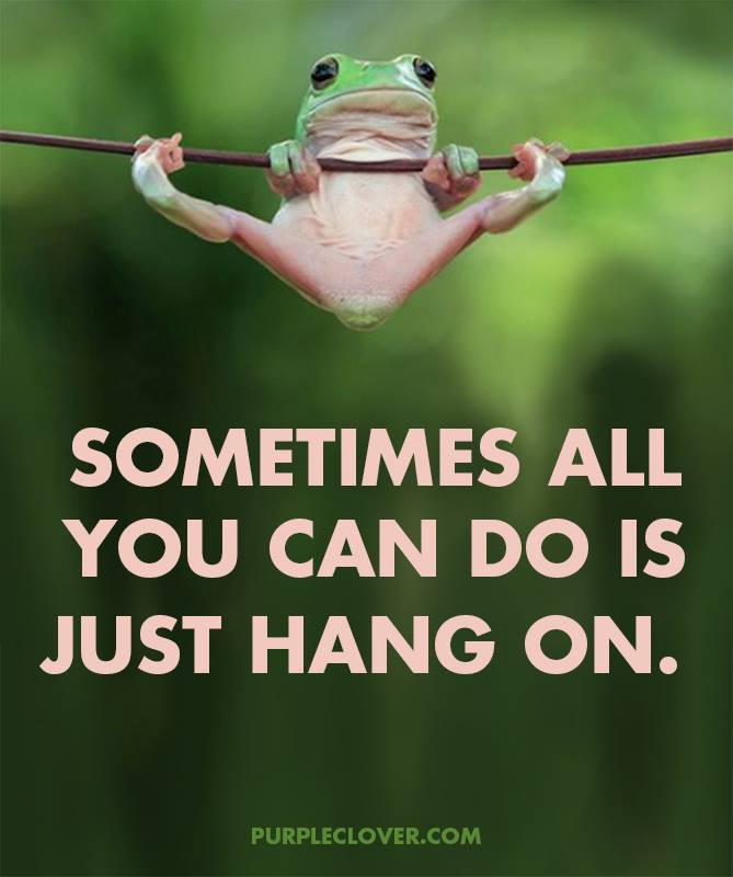 [Image] Hang on