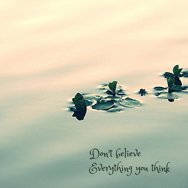 [Image] Don't believe everything you think