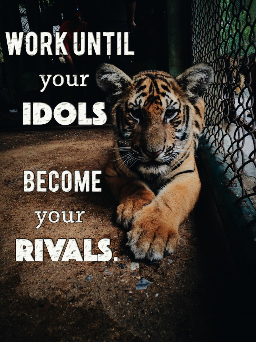 [Image] Success is when your idols become your rivals