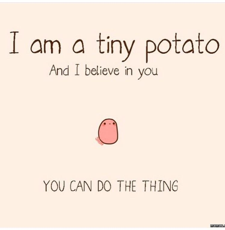 [Image] Tiny potato believes in you.