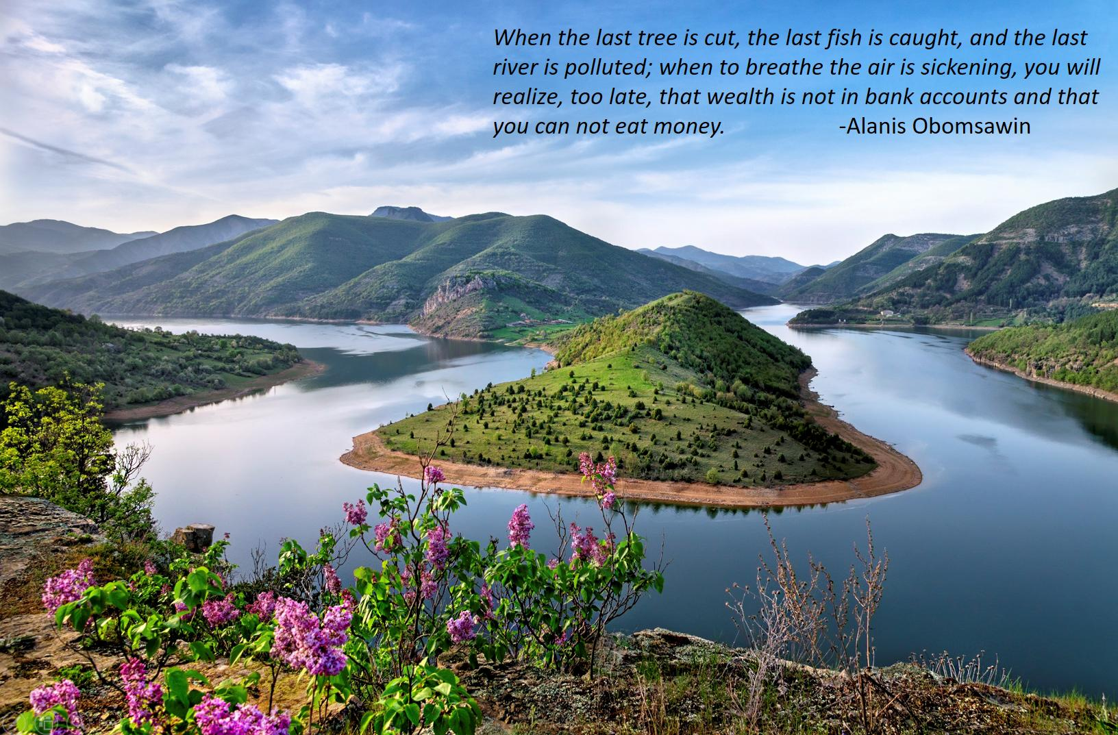 "[Image] ""When the last tree is cut, the last fish is caught, and the last river is polluted; when to breathe the air is sickening, you will realize, too late, that wealth is not in bank accounts and that you can't eat money."" -Alanis Obomsawin"