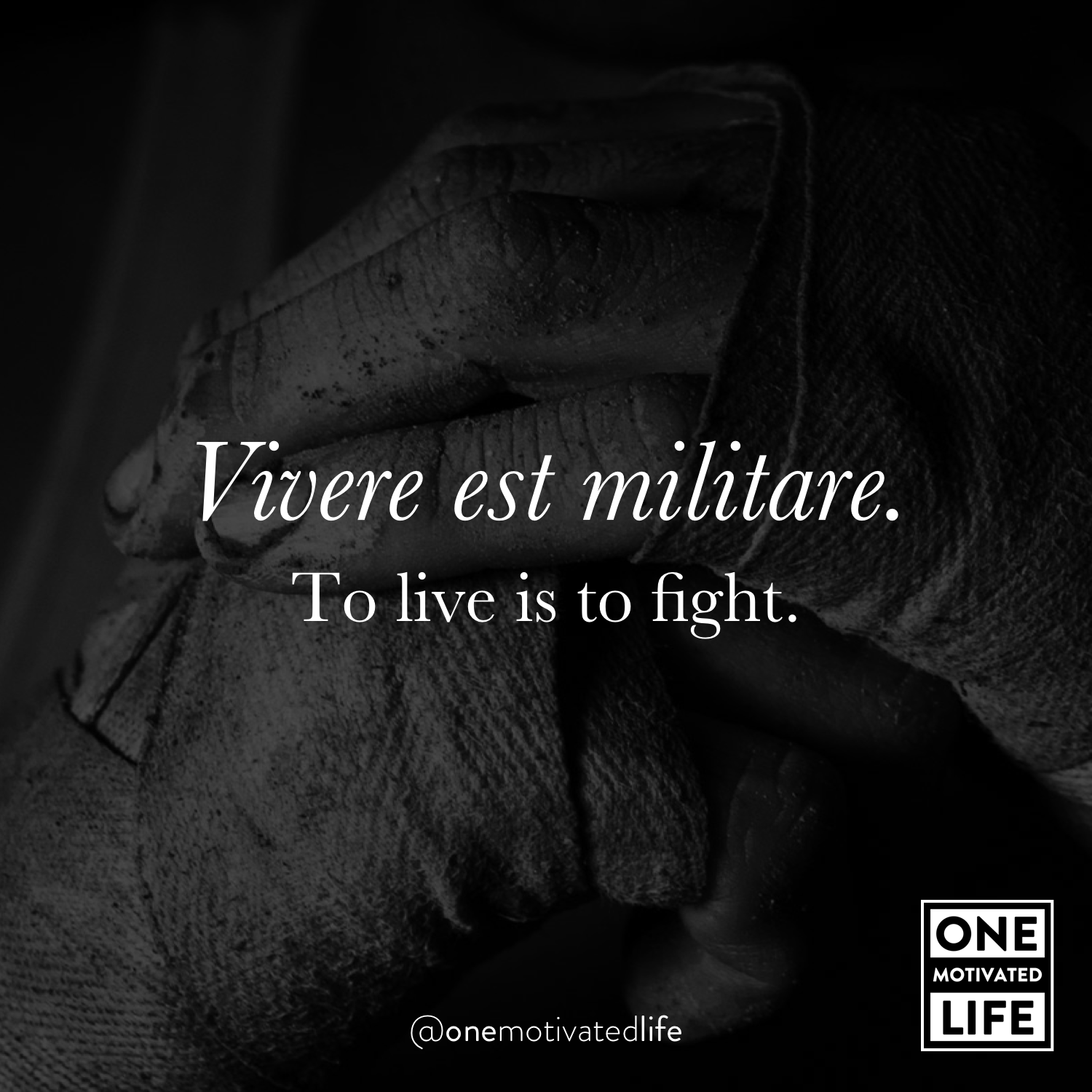 [Image] Vivere est militare. To live is to fight.