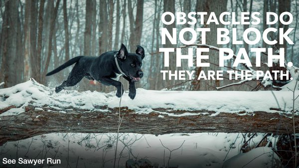 [IMAGE] Obstacles do not block the path. They are the path.