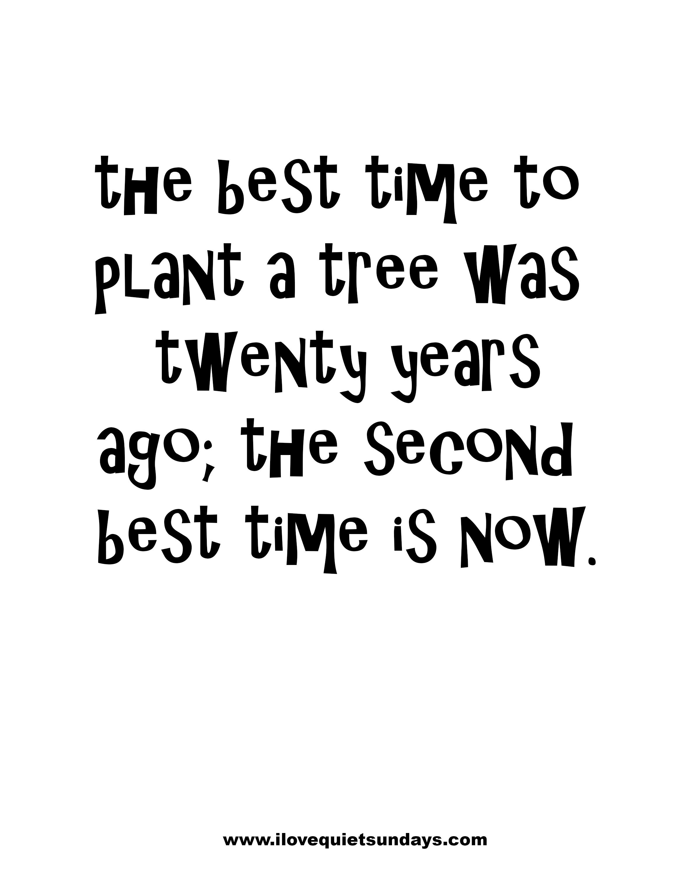 [image] The best time to plant a tree…