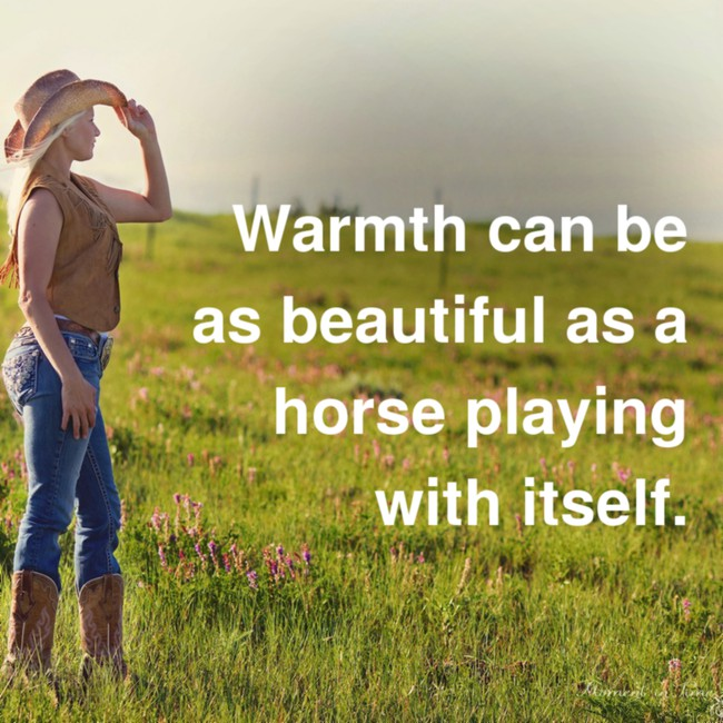 [Image] Warmth can be As beautiful…