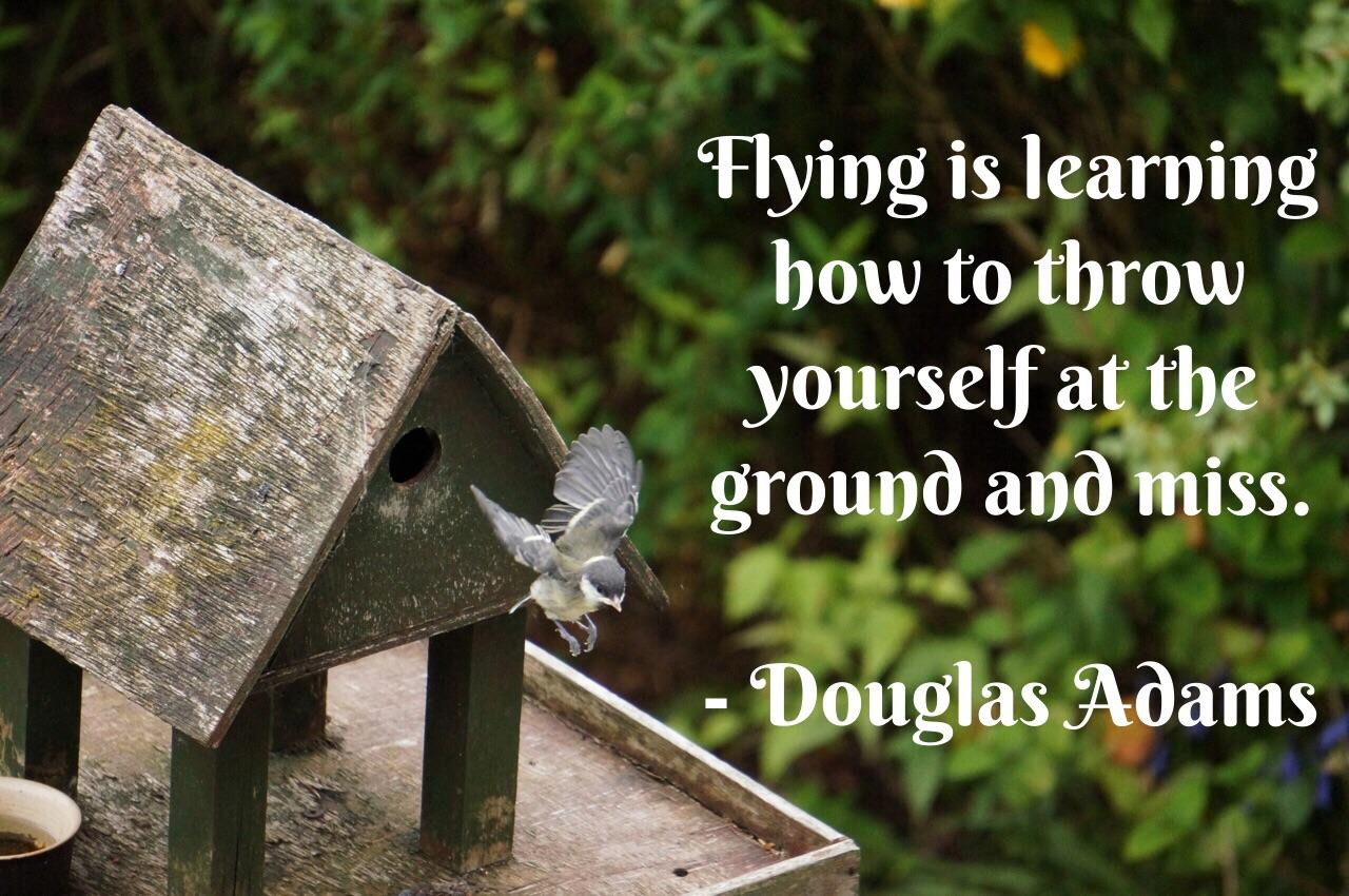 [Image] Learning how to fly