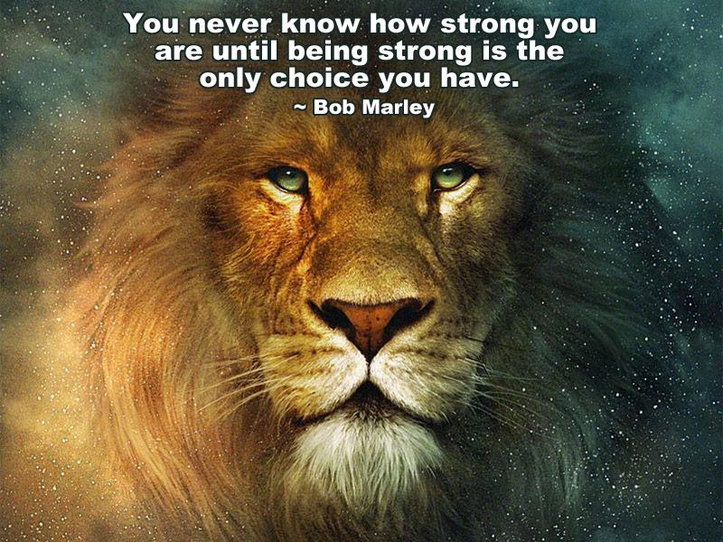 [Image] You never know how strong you are…