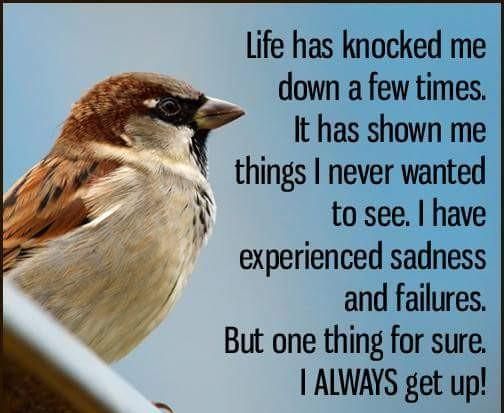 [image] Keep on keepin on. Life does get better.