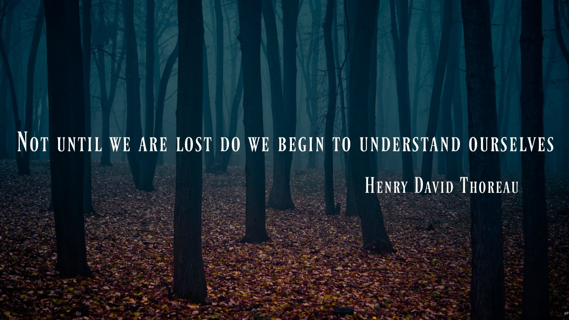 Not until we are lost to we begin to understand ourselves – Henry David Thoreau