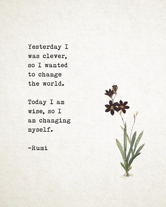 Yesterday I was clever, so I wanted to change the world.  Today I am wise, so I am changing myself.  – Rumi