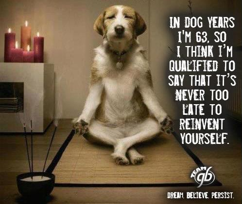 In dog years I'm 63, so I think I'm qualified to say that it's never too late to reinvent yourself.