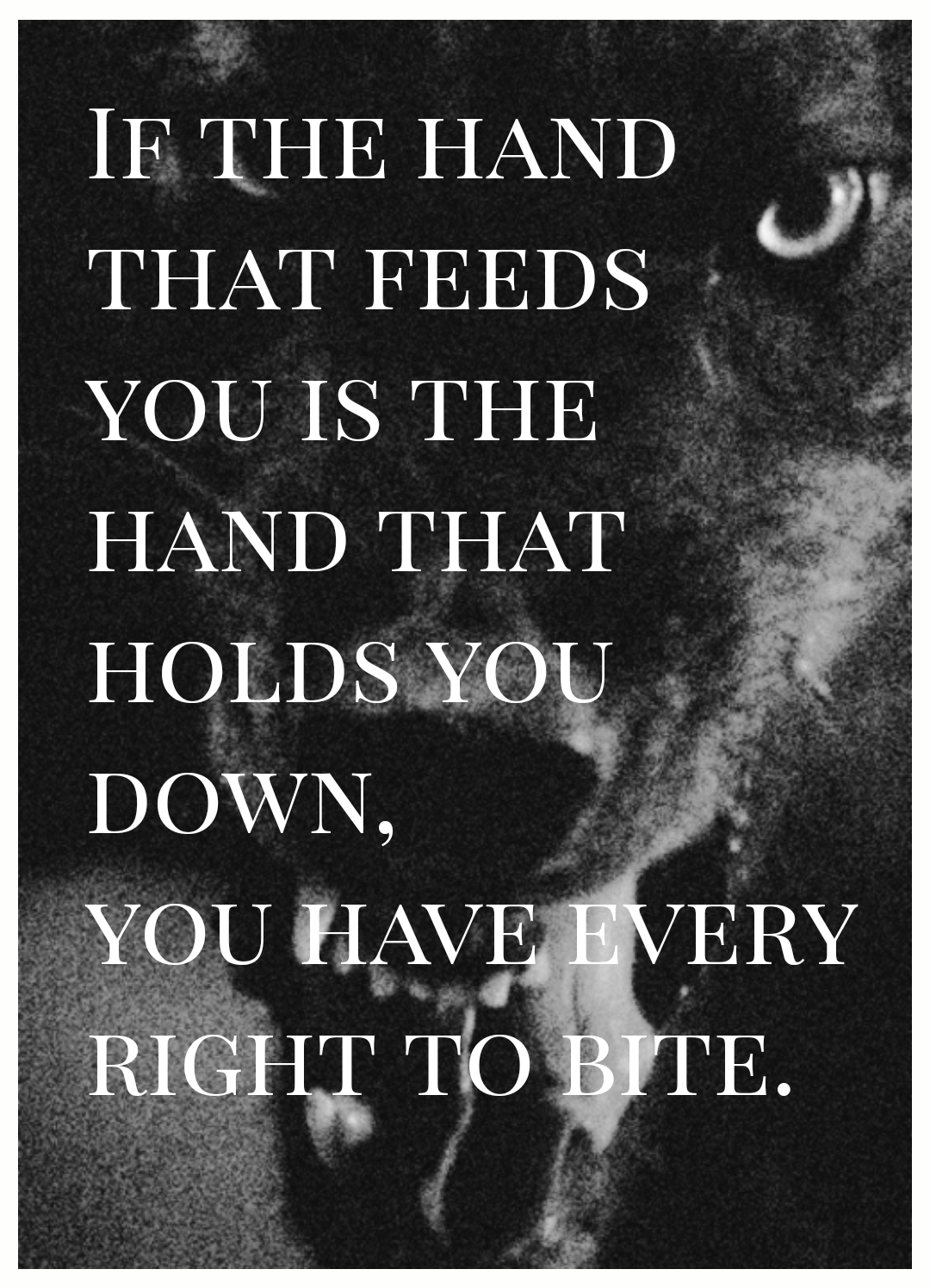 [IMAGE] The hand that feeds you…