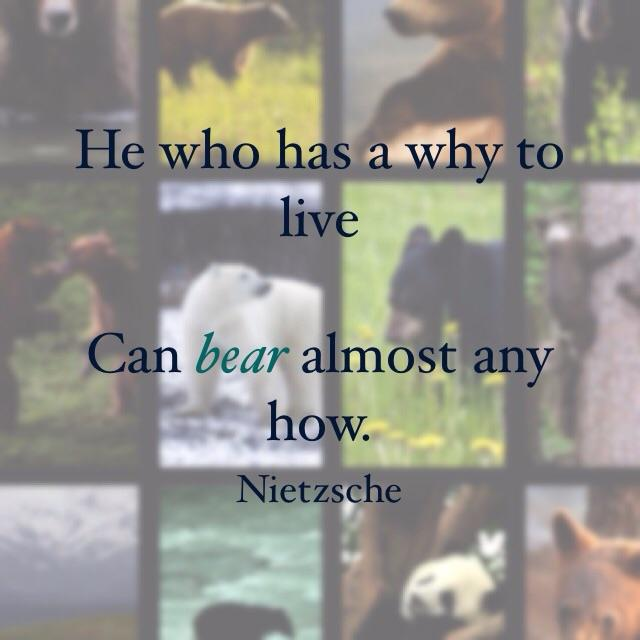 [Image] Good quote. Made me think of bears in life.