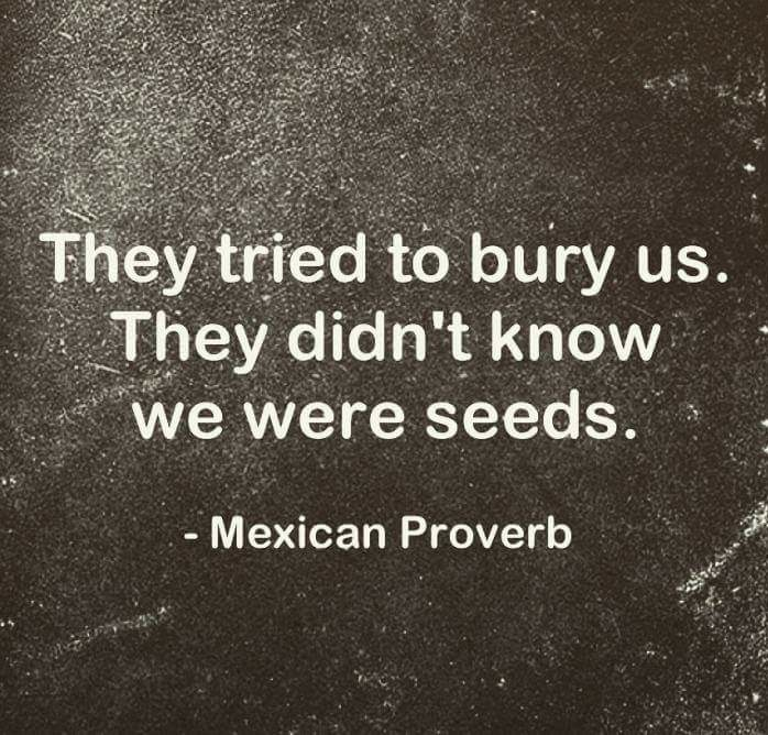 [Image] Keep this proverb in mind.