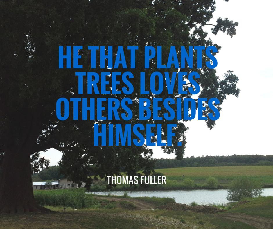 [Image] He That Plants
