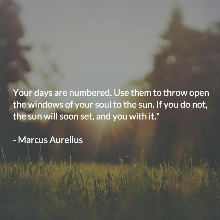 [Image] Solid advice from Marcus Aurelius
