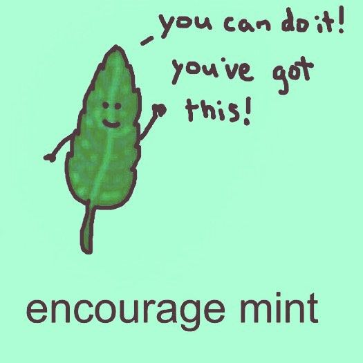 [Image] Here's Your Daily Dose Of Encourage Mint!