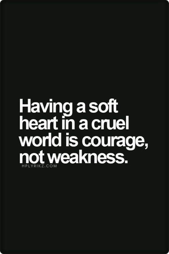 [Image] Having a soft heart in a Cruel world is courage, not weakness.
