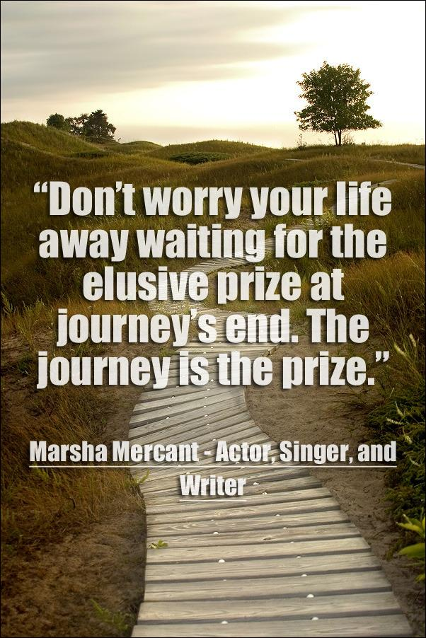 The Journey is the Prize [Image]