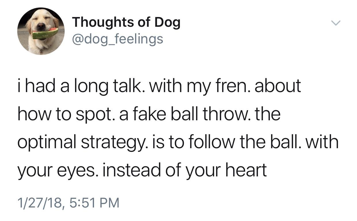 Thoughts of Dog . @dog__fee|ings i had a long talk. with my fren. about how to spot. a fake ball throw. the optimal strategy. is to follow the ball. with your eyes. instead of your heart 1/27/18, 5:51 PM https://inspirational.ly