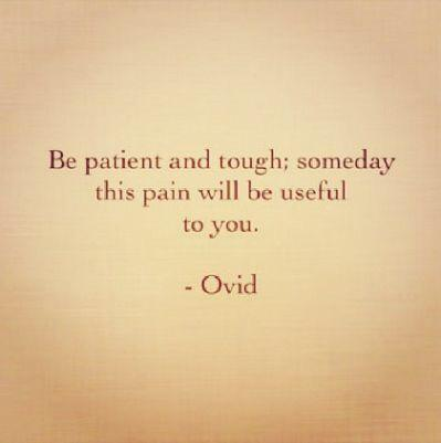Be patient and tough: someday this pain will be useful to you. - Ovid https://inspirational.ly