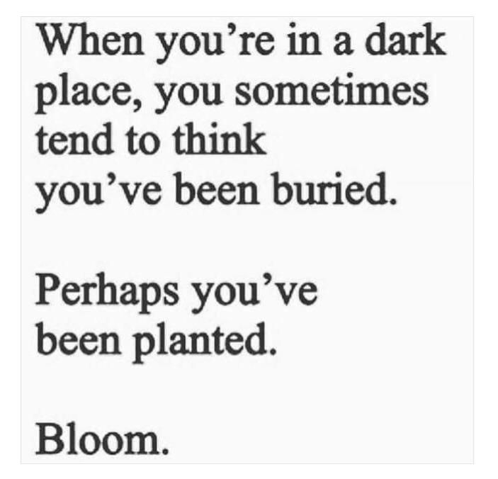 When you're in a dark place, you sometimes tend to think you've been buried. Perhaps you've been planted. Bloom. https://inspirational.ly