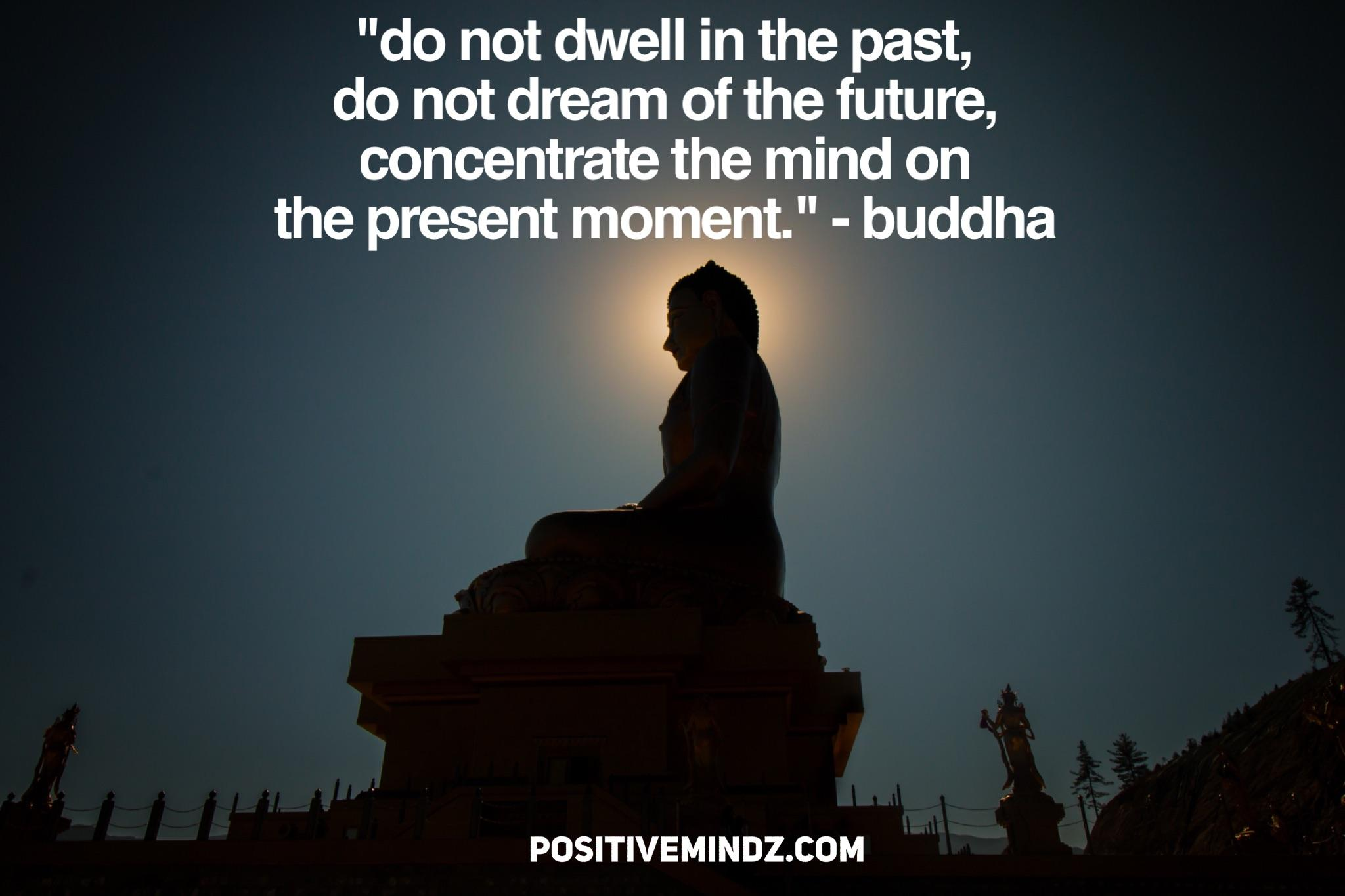 """""""do not dwell in the past, do not dream of the future, concentrate the mind on the present m 1- ."""" - buddha POSITIVEMINDZ.COM https://inspirational.ly"""