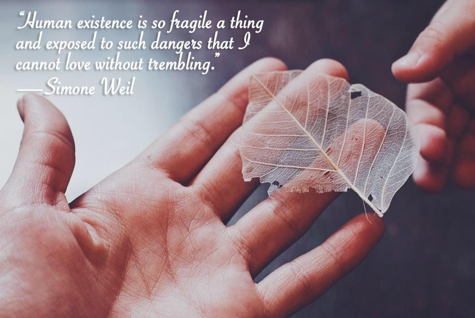 """Human existence is so fragile a thing and exposed to such dangers that I cannot love without trembling.""—Simone Weil [960×644] [OC]"