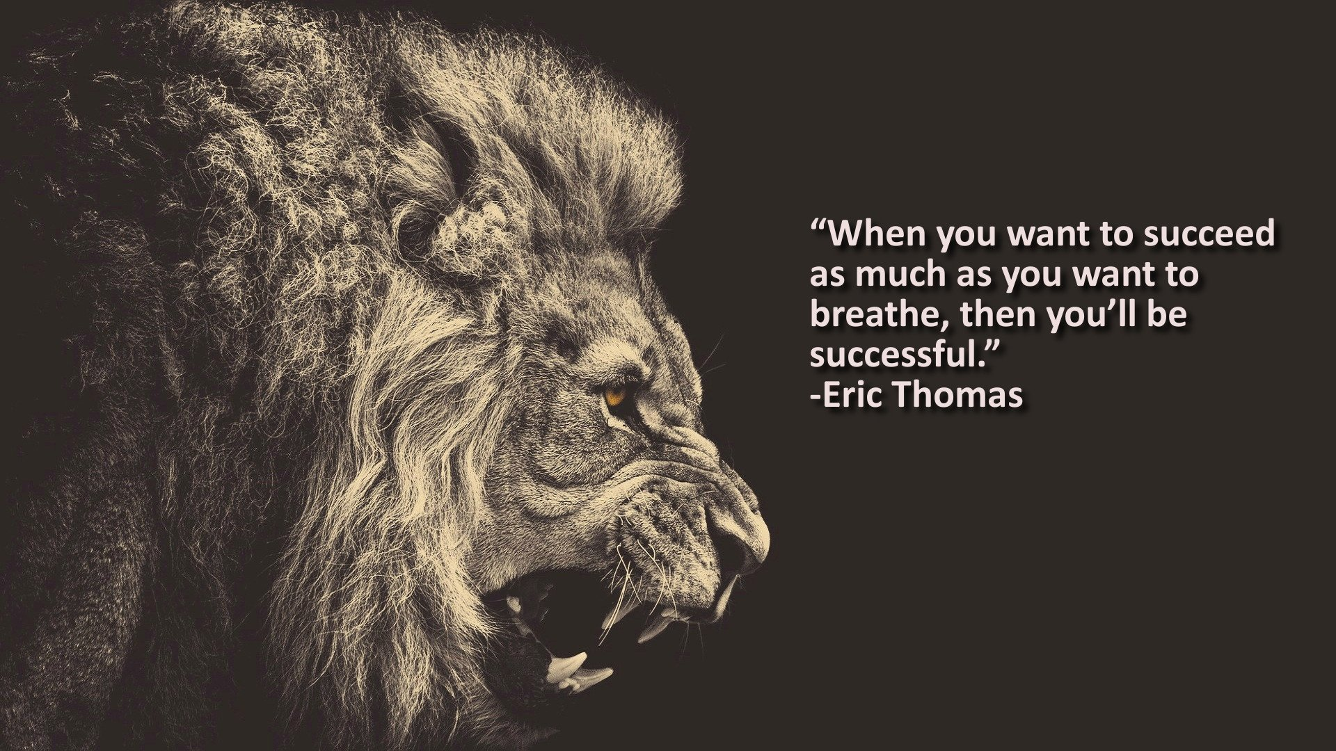 """When You Want To Succeed As Much As You Want To Breathe, Then You'll Be Successful."" – Eric Thomas [1920 x 1080]"
