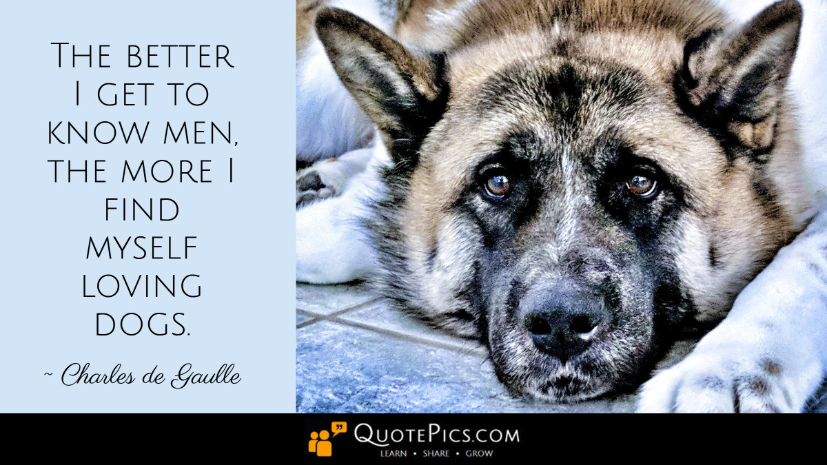 """The better I get to know men, the more I find myself loving dogs."" —Charles de Gaulle [1200×675]"