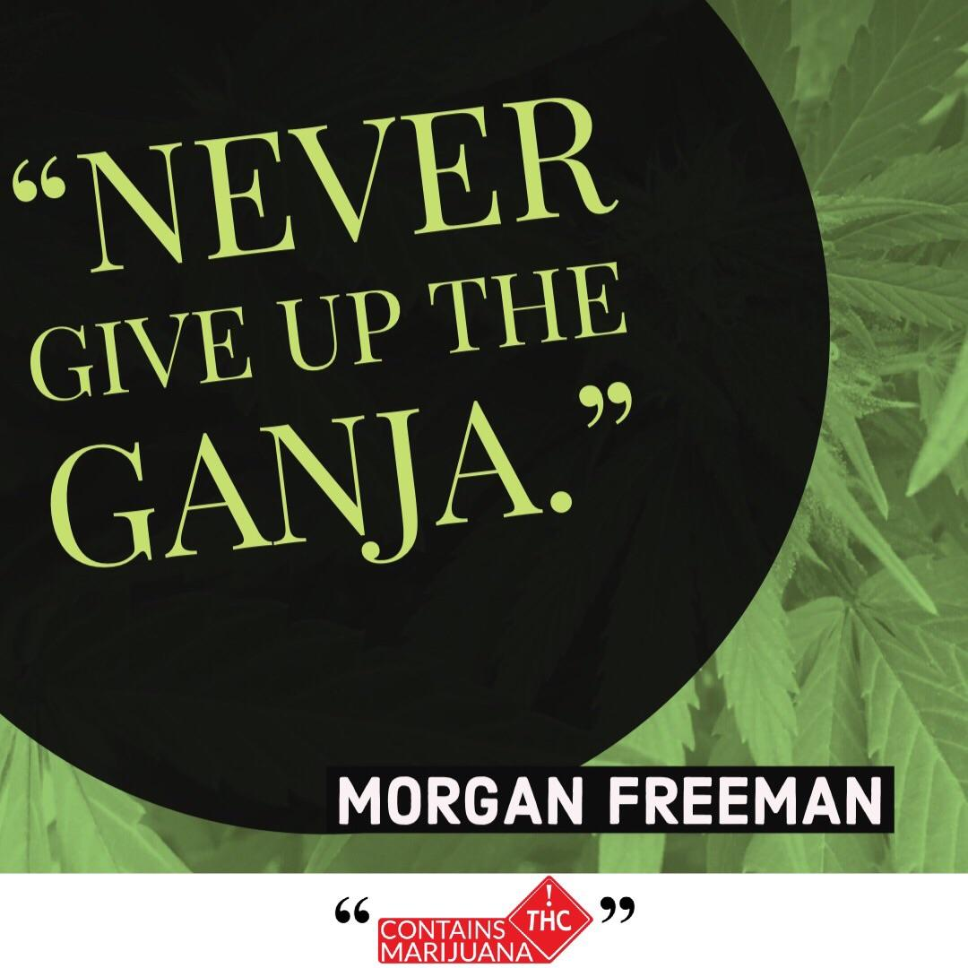 "[oc] ""Never Give Up The Ganja"" M. Freeman [1080×1080]"