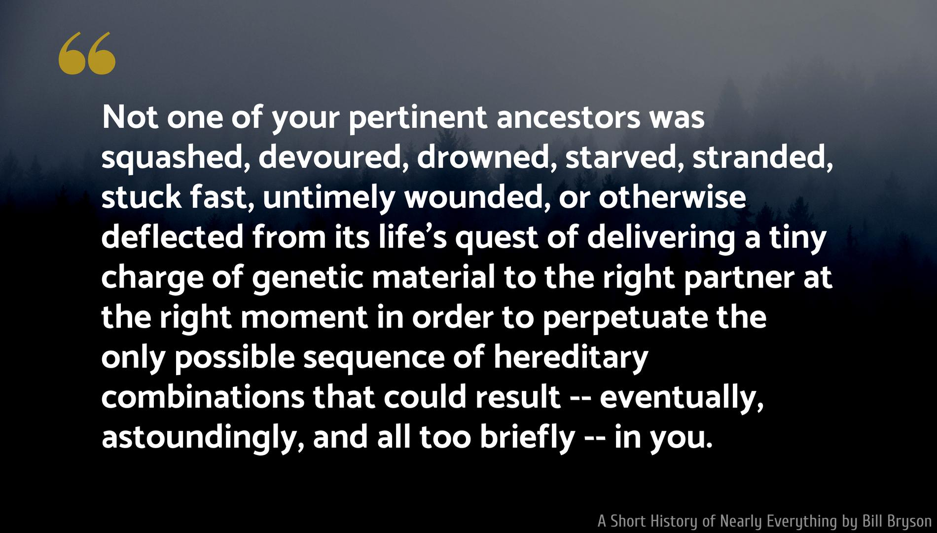 """Not one of your pertinent ancestors…"" – Bill Bryson [1900×1080]"