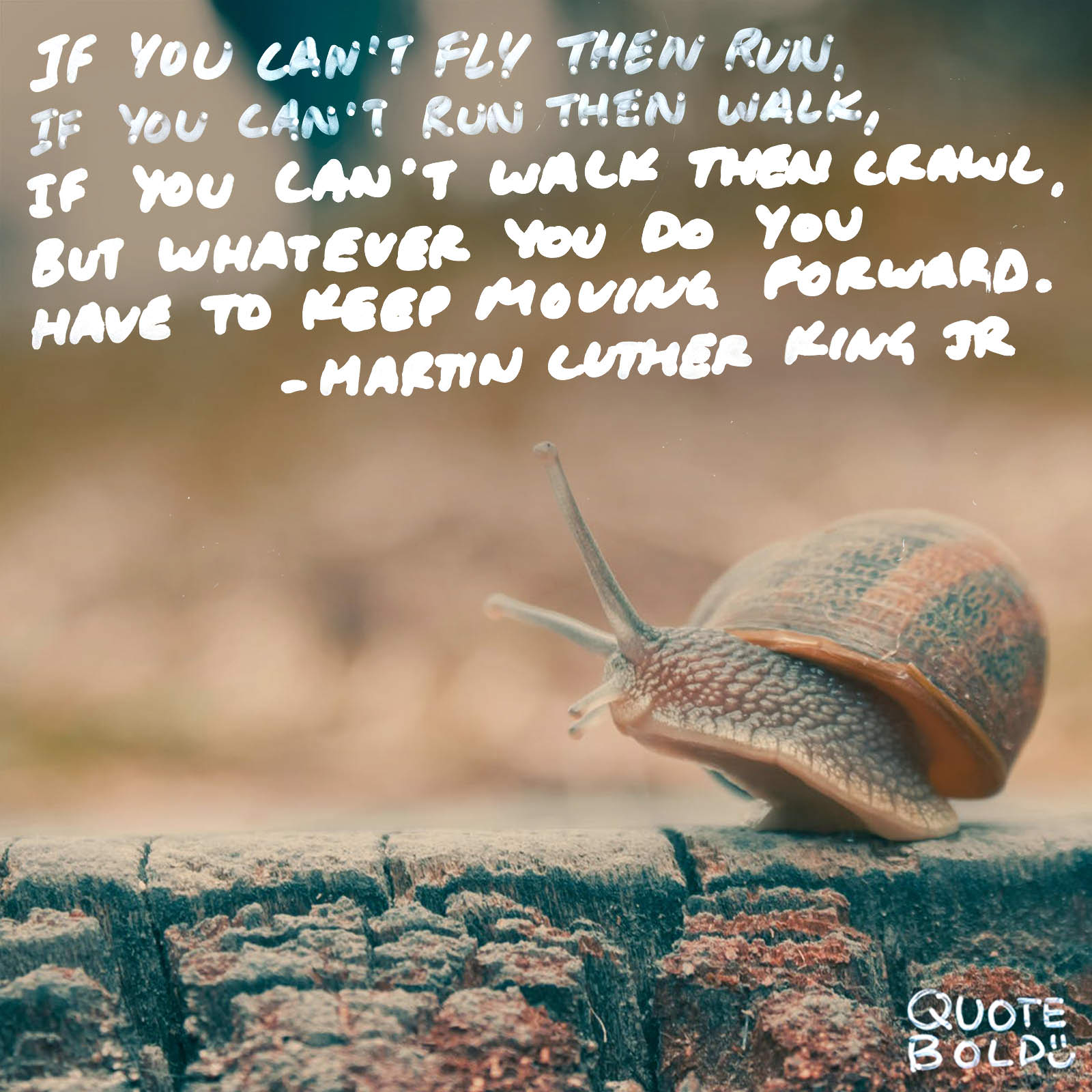 """If you can't fly then run, if you can't run then walk, if you can't walk then crawl, but whatever you do you have to keep moving forward."" – Martin Luther King, Jr. [1600×1600][OC]"