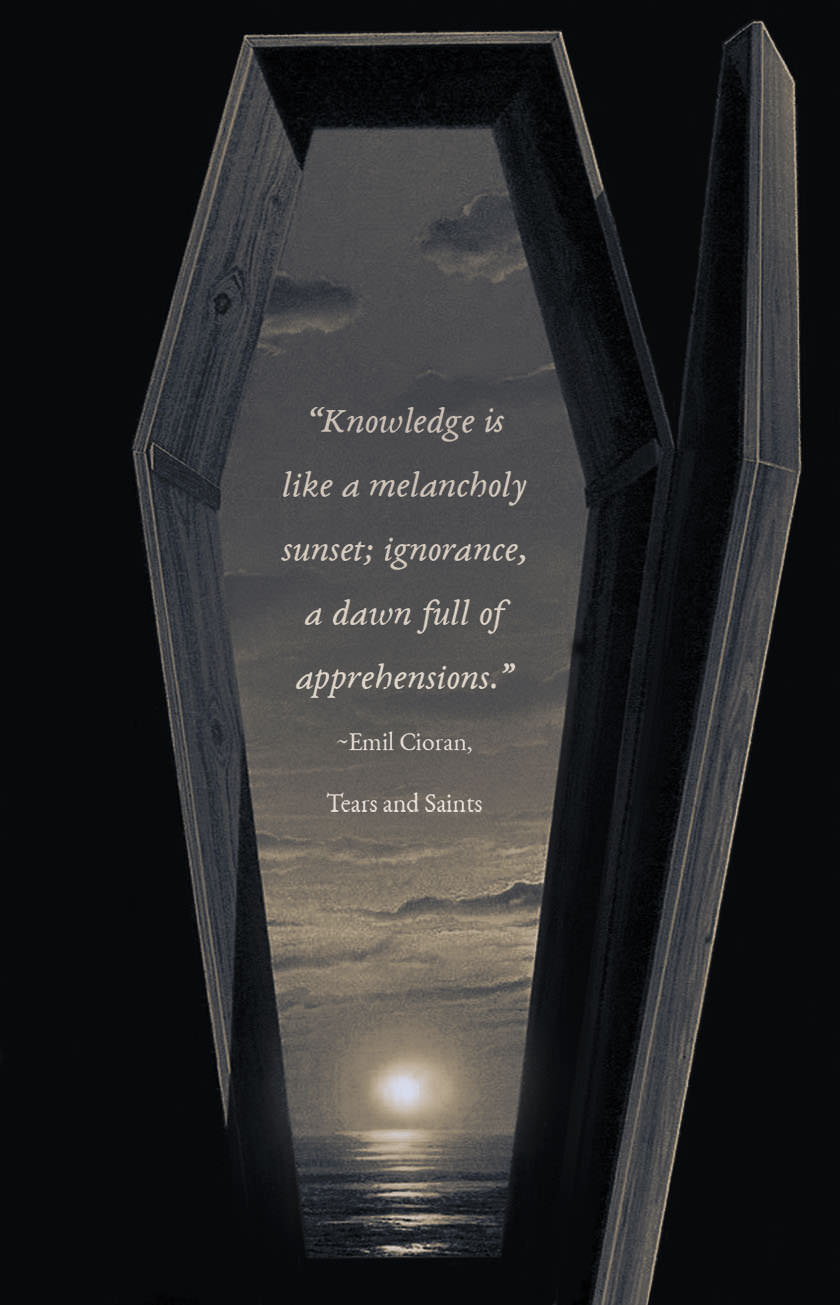 """Knowledge is like a melancholy sunset…"" —Emil Cioran [840×1305] [OC]"