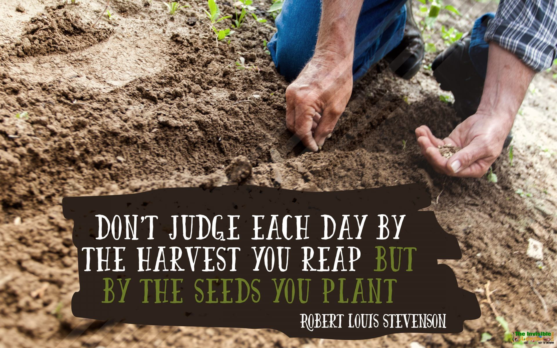 """DON'T JUDGE EACH DAY BY THE HARVEST YOU REAP BUT BY THE SEEDS YOU PLANT"" ROBERT LOUIS STEVENSON! [1920×1200]"