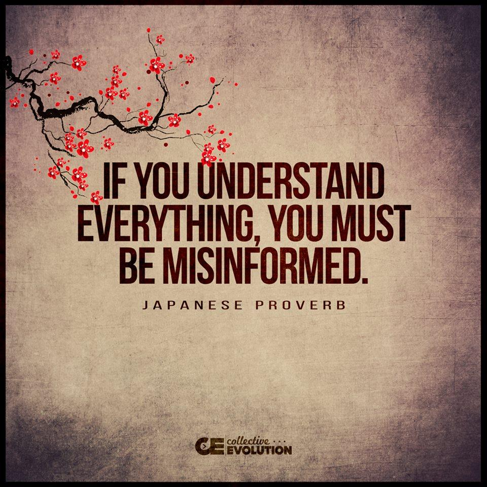 """If you understand everything, you must be misinformed."" – Japanese Proverb [960×960]"