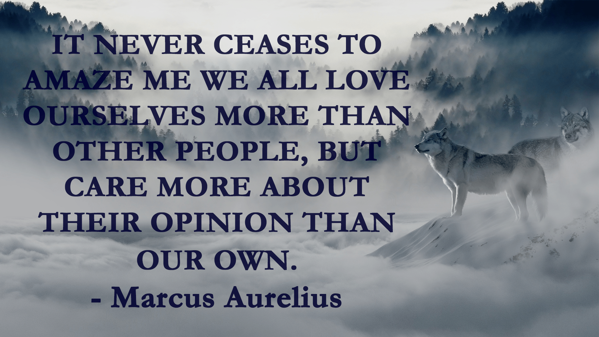 """It never ceases to amaze me we all love ourselves more than other people…"" – Marcus Aurelius ]1920×1080]"