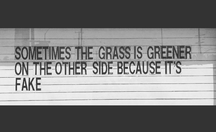 [Image] Focus on your own grass