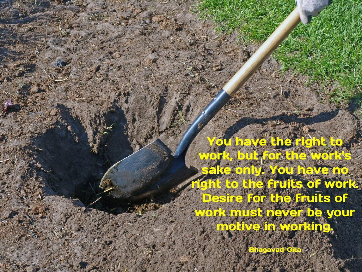 """You have the right to work, but for the work's sake only. You have no right to the fruits of work. Desire for the fruits of work must never be your motive in working. "" – Bhagavad Gita [1242×933]"