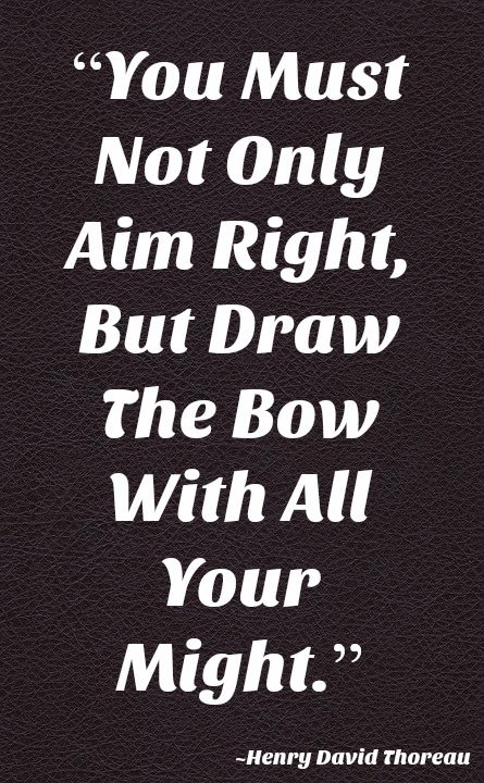 "[IMAGE] ""Aim Right with All Your Might"" (194)"