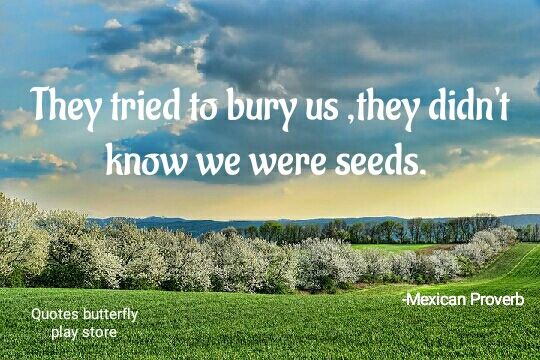 They tried to bury us ,they didn't know we were seeds. -Mexican Proverb [540*360] Source -Quotes Butterfly app